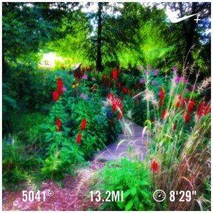 marathon training run in Kentucky