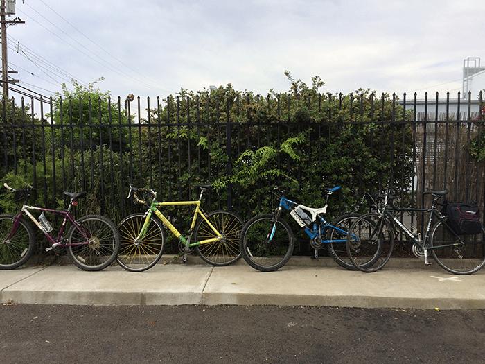 asweatlife_Active-City-Guide--Sacramento_Biking