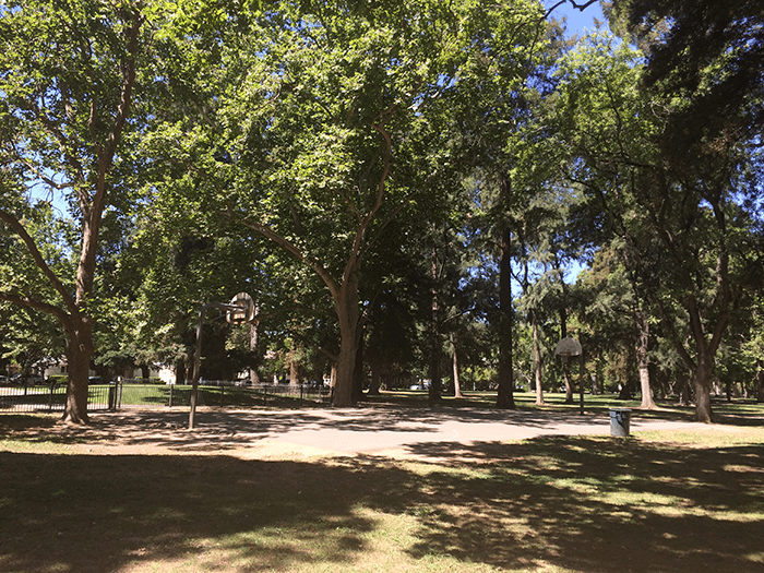 asweatlife_Active-City-Guide--Sacramento_Land-Park
