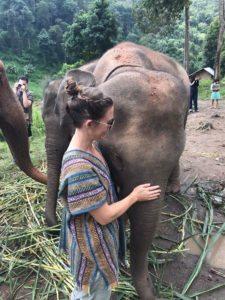 inspiration from elephants
