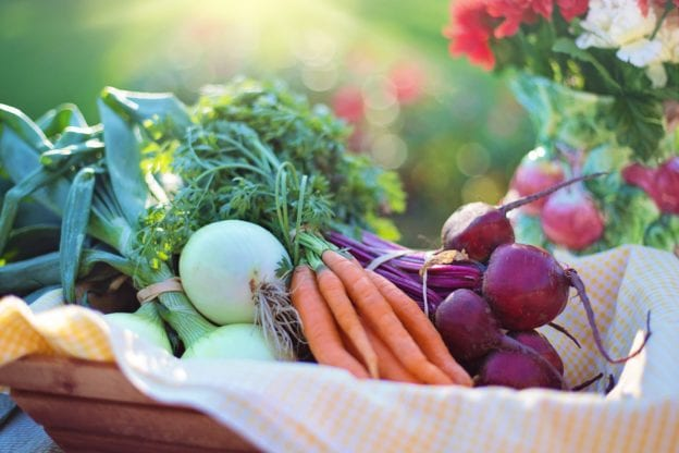 how to make the most out of a CSA membership