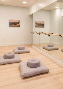 the wing dumbo wellness clubs