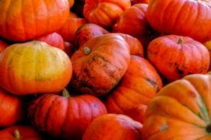 benefits of pumpkins and apples