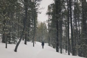 benefits of spending time in nature