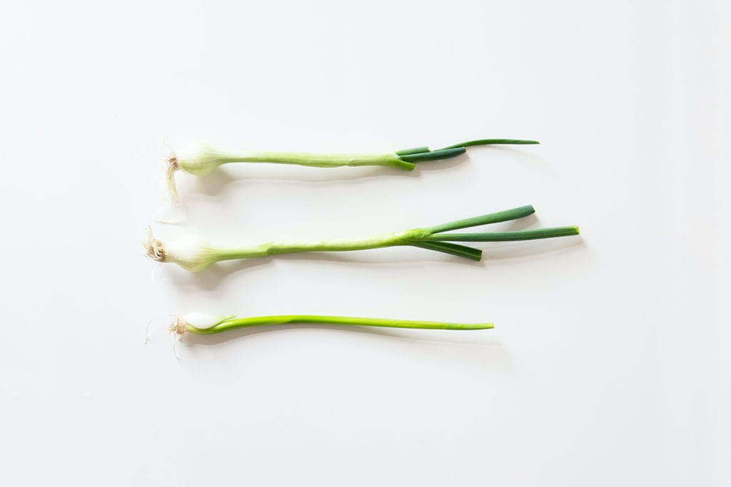 plants you can regrow from scraps, regrow green onions