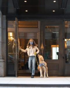 The Foggy Dog leash and bandana