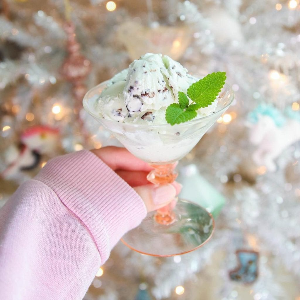 nick's plant based ice creams